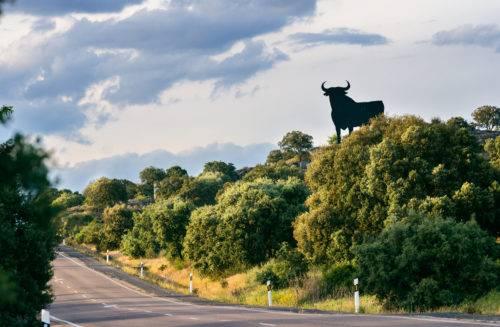 Osborne Bull. Symbol of Toro.