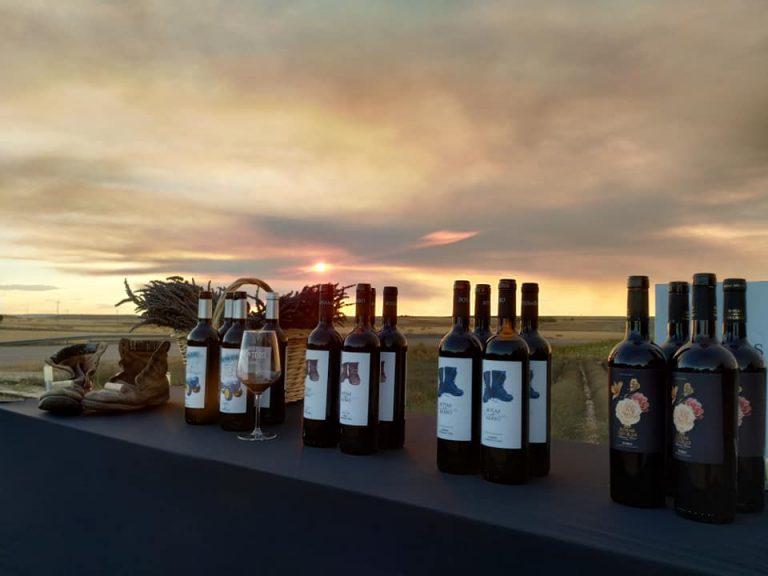 Many Fine Wines To Savor